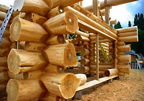 Из какого дерева лучше строить баню